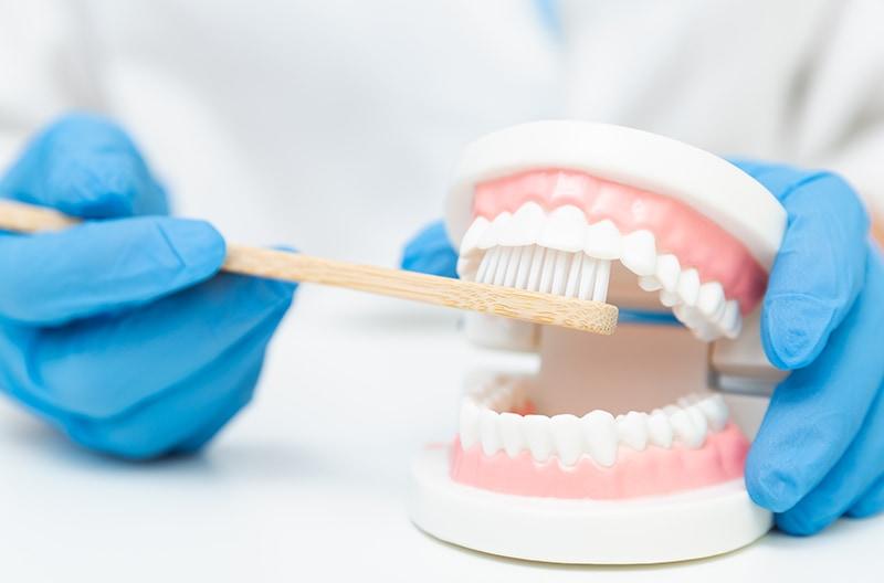 智齒蛀牙-拔智齒-牙刷選擇-正確刷牙方式-台中朗日牙醫